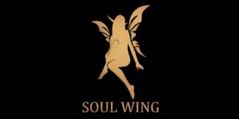 Soul Wing